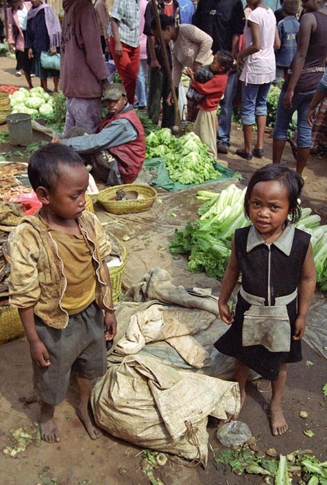 malý trhovci, Madagaskar