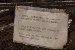Upozornění na venkovním výběhu - ksukol ocasatý (Daubentonia madagascariensis)