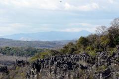 Letící vaza nad skalním městem, v pozadí nejvyšší bod Jantarových hor – Hora Ambre