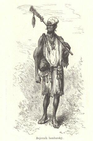 Bojovník-bambarský