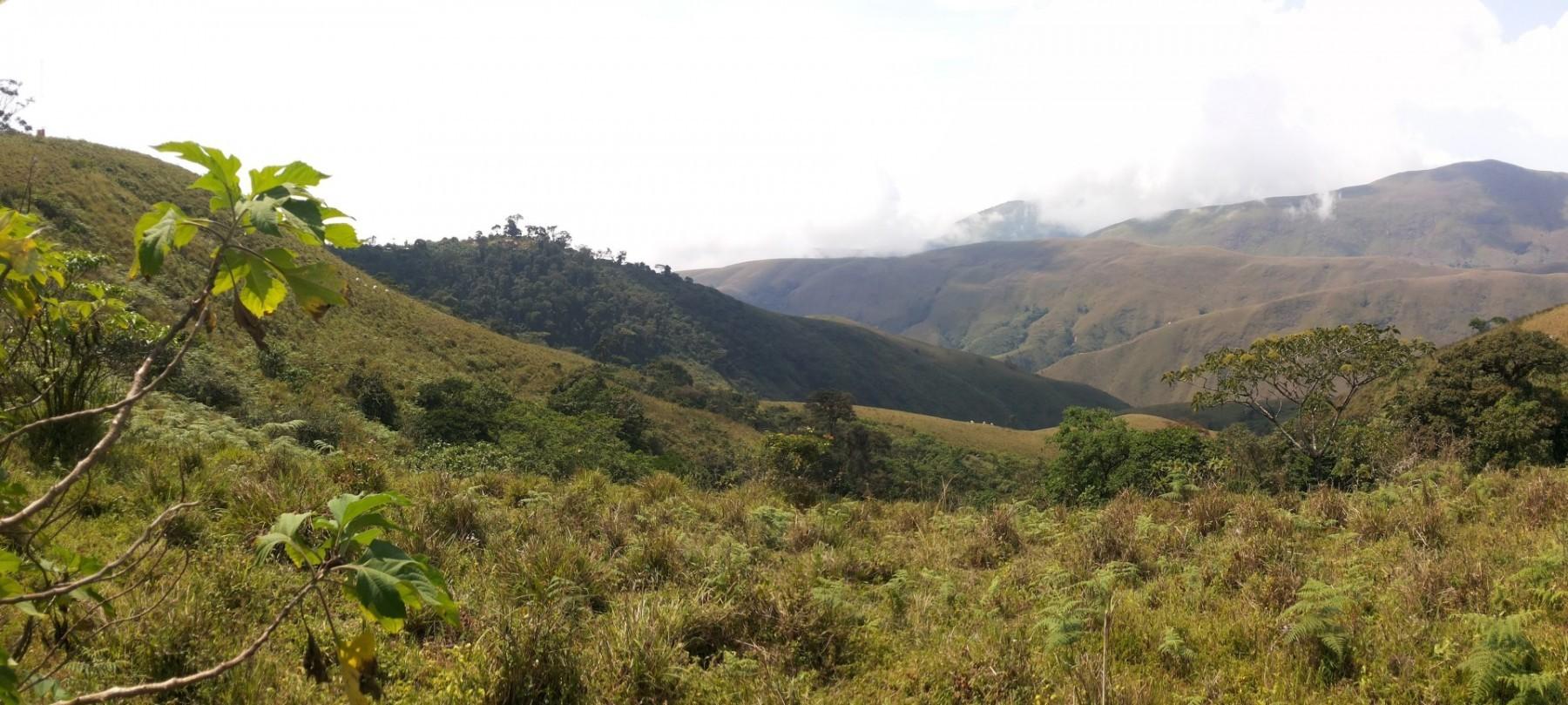 Cross River National Park a pohled směrem na Kamerun
