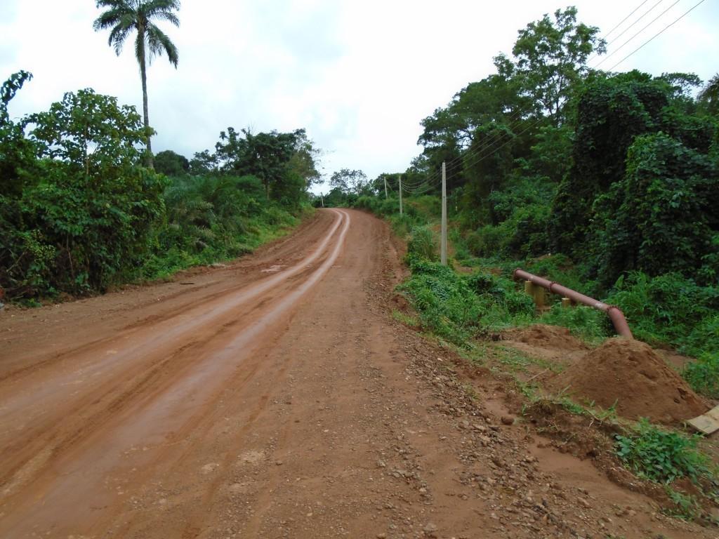 Silnice u jezera Obudu