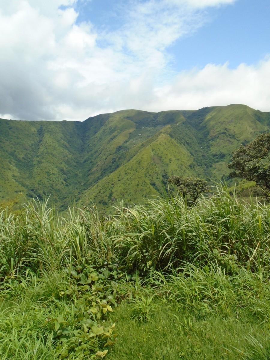 Domky na horách, Obudu