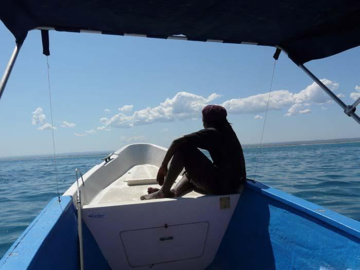 hledání velryb, Ifata, Aye-Aye expedition, Madagaskar