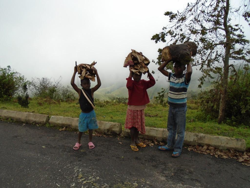 Děti za výdělkem nosí dříví