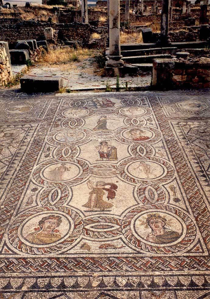 Volubilis - mozaika