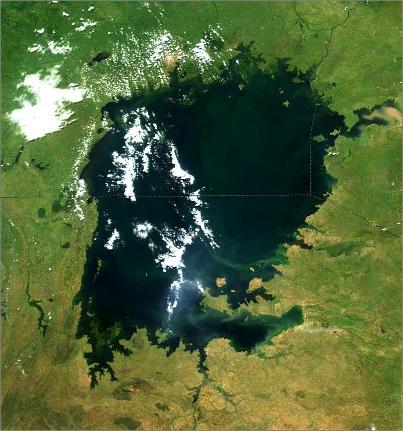 Lake Victoria (NASA, MODIS)