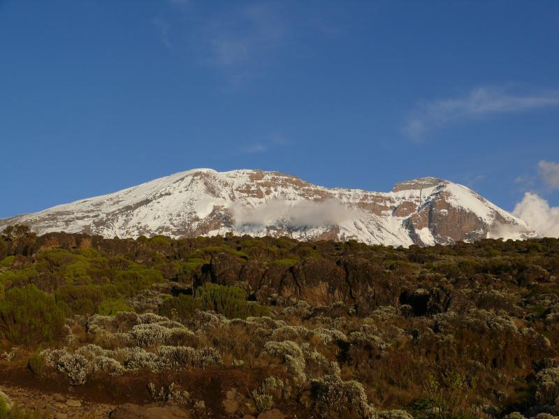 Kilimandžáro při pohledu od Shiry