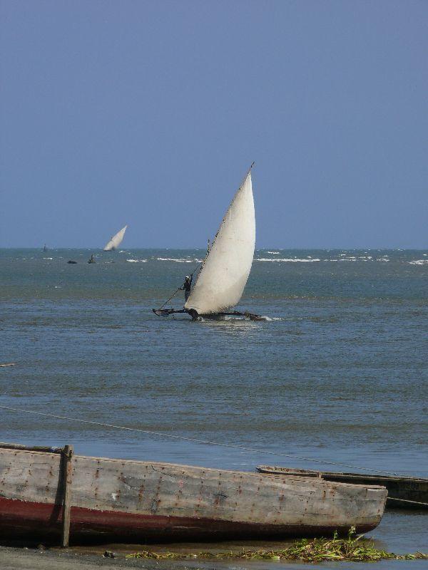 Pangani a přístav (foto: Pavel Kohout, Tanzanie)