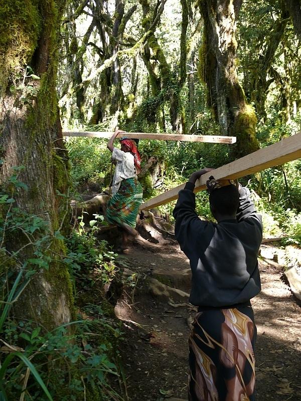 Nosiči dřeva, Kilimandžáro