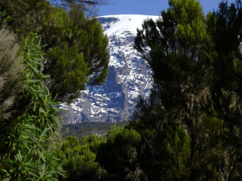 Pohled zpět na vrchol Kibo, Kilimandžáro