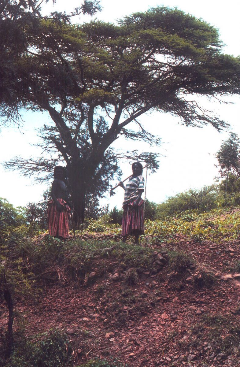 Ženy národa Konso, Etiopie