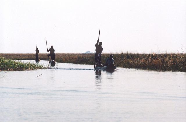 lodě na Zambezi, Mongu