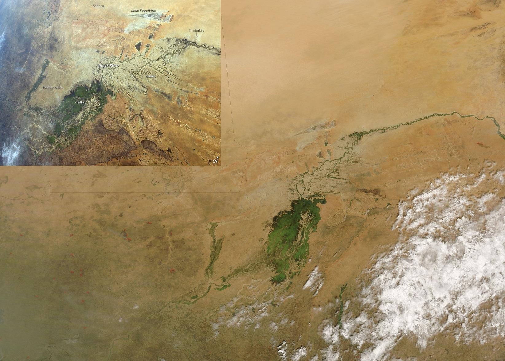 Vnitřní delta Nigeru (Zdroj: NASA)