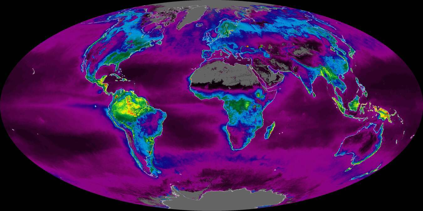 "Earth's carbon ""metabolism"" (NASA, 2002)"