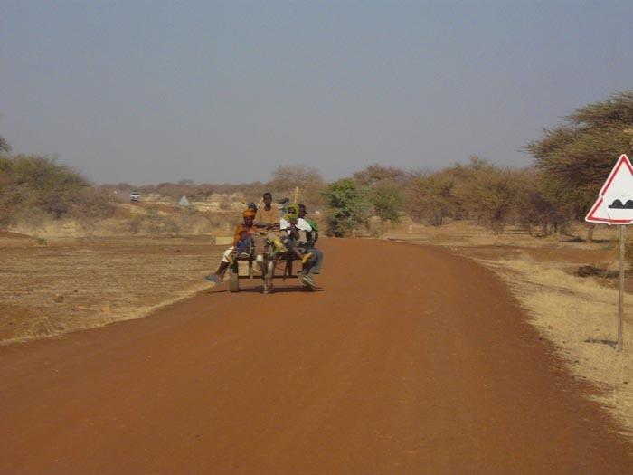 Křovitá savana, Burkina Faso; foto: Vladimír Zikán