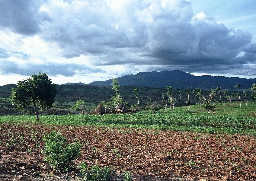 Zemědělská krajina Konso, Etiopie