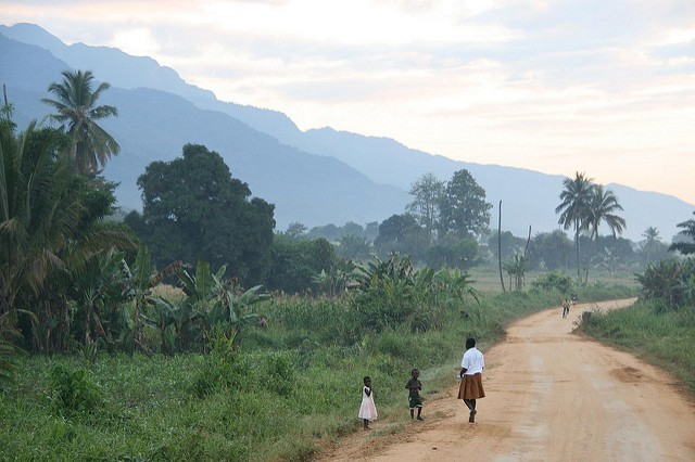 Marc Veraart: Udzungwa Mts