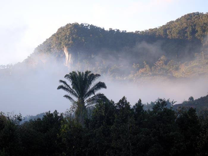 Mlžný opar ve vesnici Ranomafana