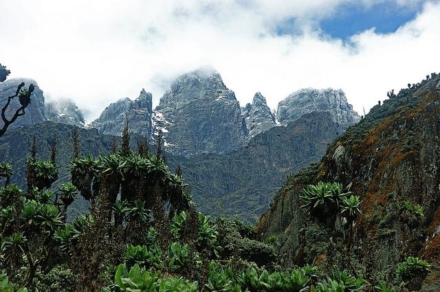 Vrcholy masivu Mt. Baker, Ruwenzori; Autor: Jørn Eriksson