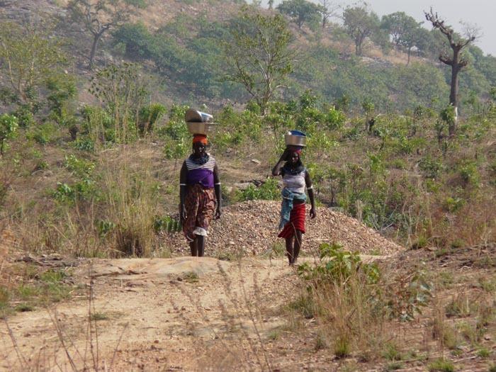 Stromová savana, severní Benin; foto: Vladimír Zikán