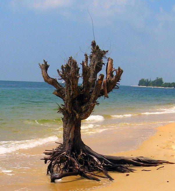 cjlvp: Pláž v Gabonu