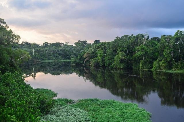 njbdodane prales Gabon