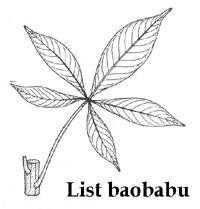 baobab_list
