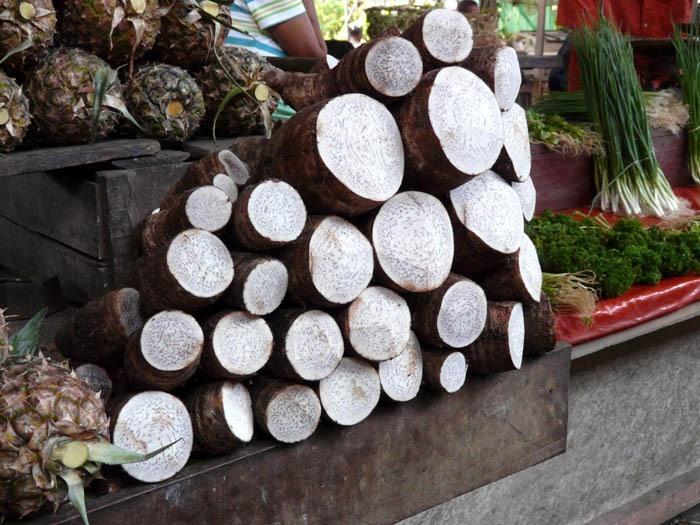 prodej manioku v Madagaskaru