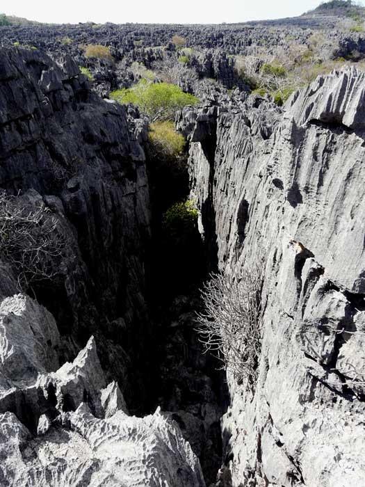 Tsingy, L´Ankárana, Madagaskar