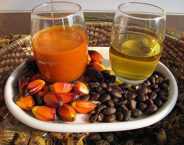Palma olejná (Elaeis guineensis) - olej