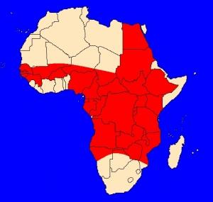 Afričtí bahníkovití (Protopteridae) - rozšíření