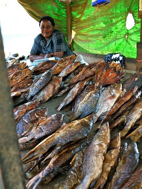 Uzení okouni a tilapie na trhu v Kampale (Autor: WorldFish - Flickr.com)