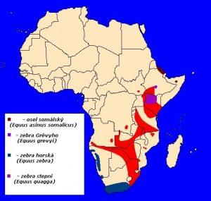 Afričtí koňovití (Equidae) - rozšíření