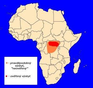 Okapi pruhovaná (Okapia johnstoni) - rozšíření