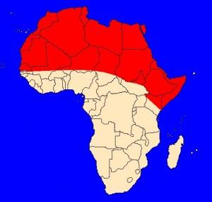 Velbloud jednohrbý (Camelus dromedarius) - rozšíření
