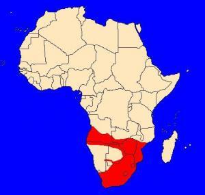 Pavián čakma (Papio ursinus) - rozšíření