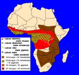 luskouni - rozšíření v Africe