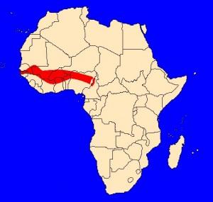 mapka výskytu kobry kamerunské