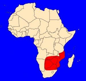 výskyt kobry mosambické