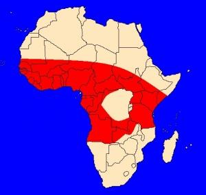 mapka výskytu kobry černokrké