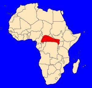 mapka výskytu papouška niamského