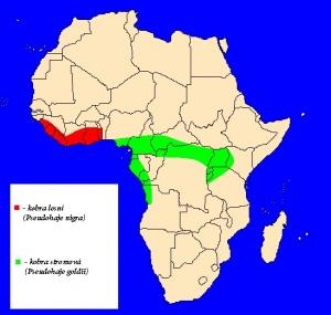 mapka rozšíření kobry stromové a lesní