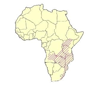 Zoborožec kaferský (Bucorvus leadbeateri) - rozšíření