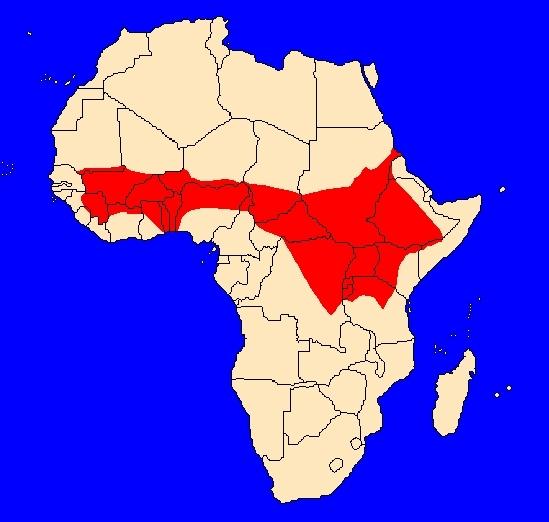 Rozšíření paviána anubi