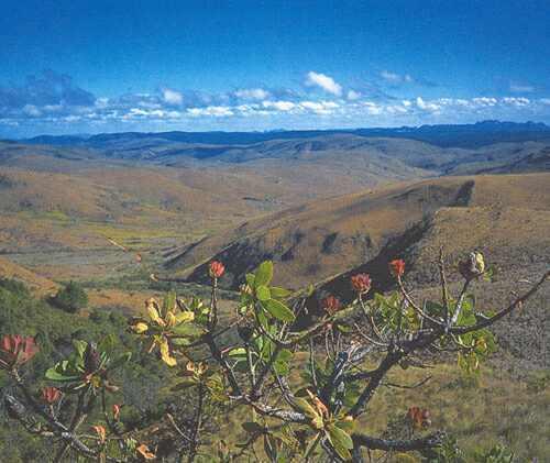 úpatí pohoří Nyangy